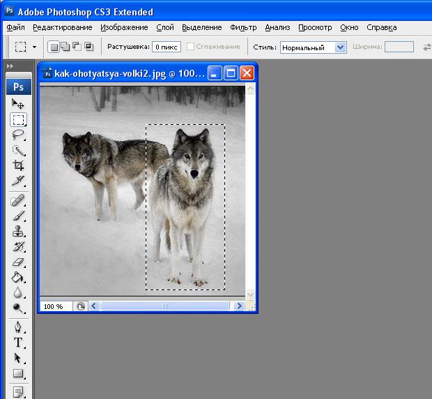 tuxpaint_wolf